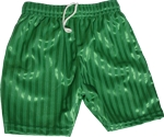 Bright Green (School) Sport Shorts (Emerald Green)